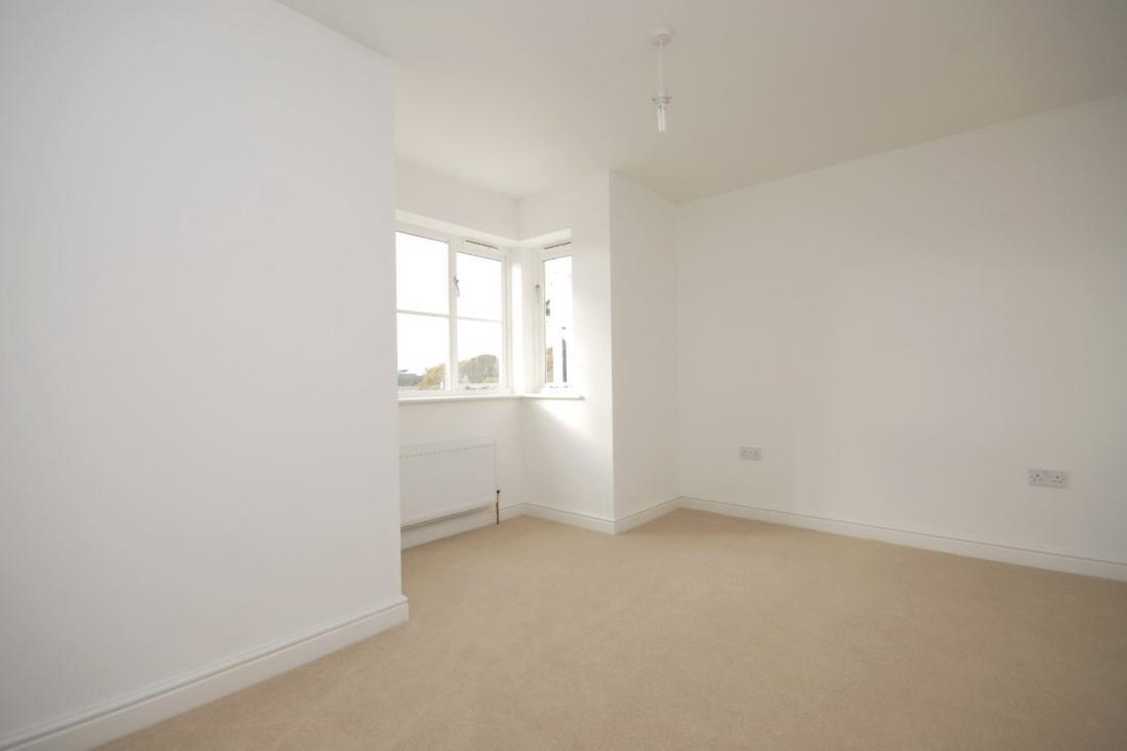 Properties To Let in Albion Lane