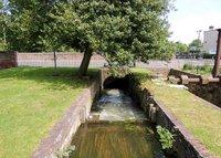 Abbotts Mill Gardens