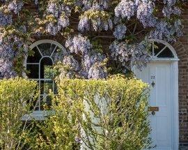 Countryside_Front_Door